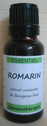 Extrait macérât mère concentré de bourgeons Romarin (Rosmarinus officinalis) Gemmothérapie biologique Romarin gemmo bio romar