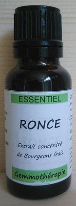 Extrait macérât mère concentré jeune pousse Ronce (Rubus fructicosus) Gemmothérapie biologique ronce gemmo bio ronce