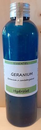 Hydrolat Géranium odorant biologique Soin de la peau Régénérant cutané Cicatrisant