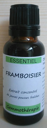 Extrait macérât mère concentré de bourgeons Framboisier (Rubus idaeus) Gemmothérapie biologique framboisier gemmo bio framboi