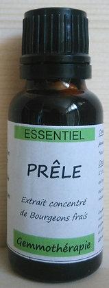 Extrait macérât mère concentré jeunes pousses Prêle bio (Equisetum arvense) Gemmothérapie biologique Prêle gemmo bio prele