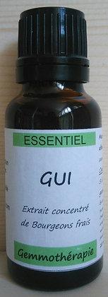 Extrait macérât mère concentré de bourgeons Gui Viscum album Gemmothérapie biologique gui gemmo bio gui