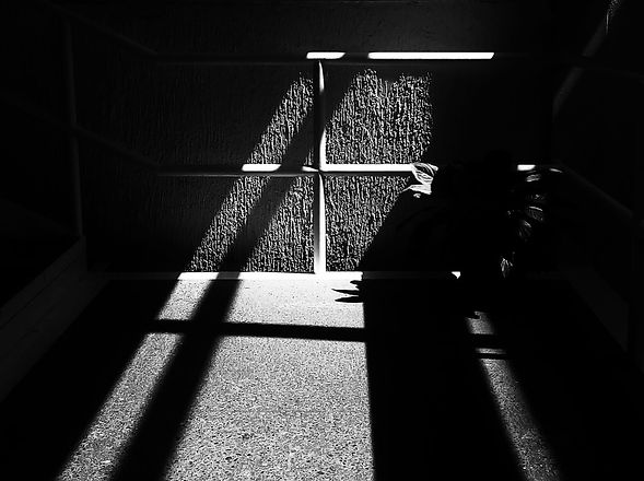 shadowsx1500.jpg