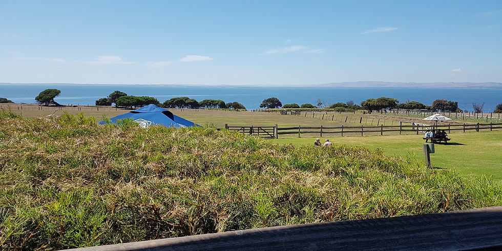Work from anywhere - Phillip Island co-working Business SME, digital normad