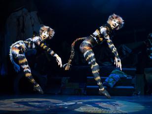 Cats. Milton Keynes Theatre.