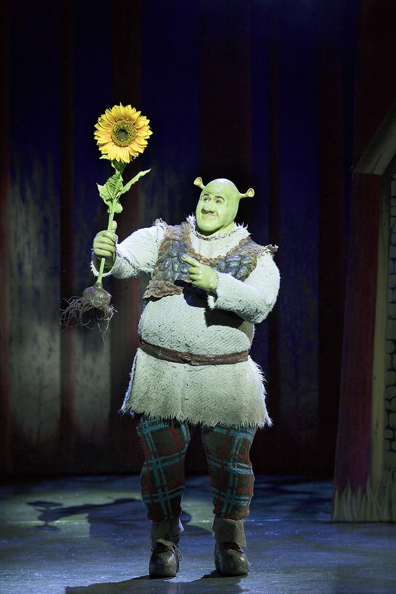 Steffan Harri as Shrek