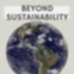 Beyond sustainability IG.png