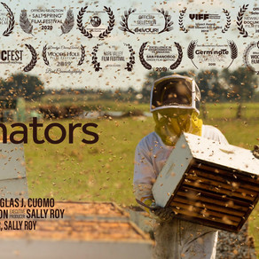 The pollinators - Conscious Movies