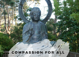 Compassion for all workshop July 30th