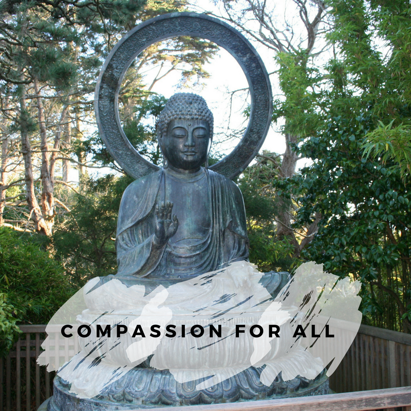 Compassion for all workshop