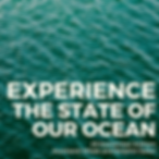 Experience the state of our ocean IG.png