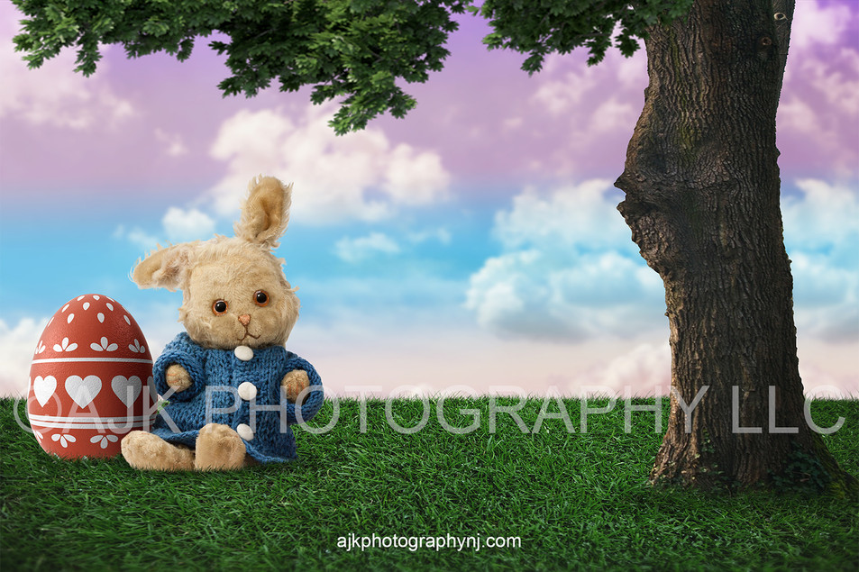 plush bunny in field after thumbnail.jpg