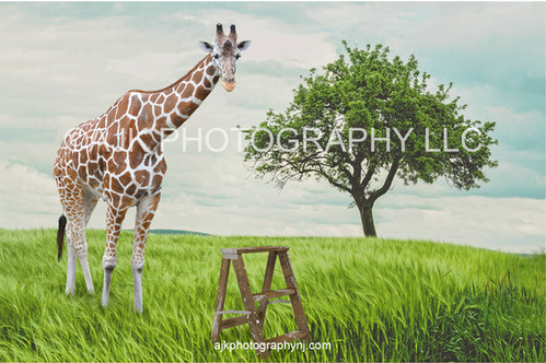 giraffe in field after thumbnail.jpg