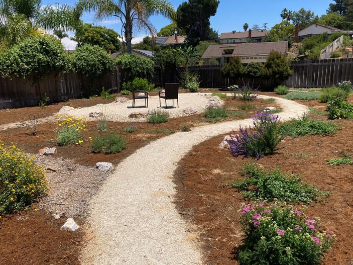 Backyard Bloomfest