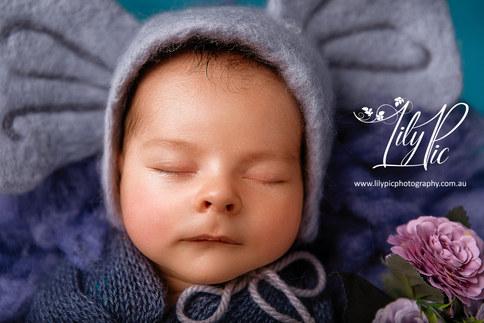 Bunbury and south west newborn photography