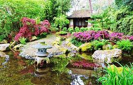 pinetum-garden-cornwall_58e0dc14719578f8