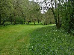 Lawns small.jpg