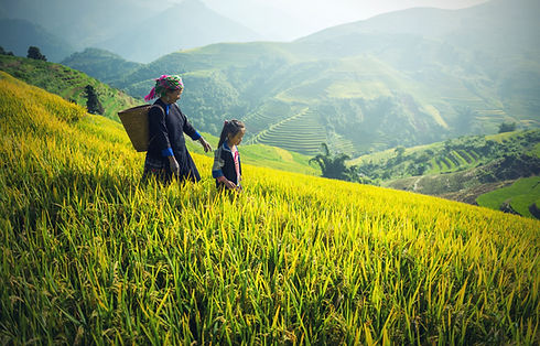 Mother and daughter in Rice fields
