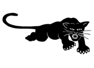 Black Panther Party Turned 50...Silence