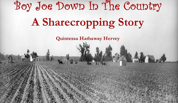 Boy Joe Down in the Country: A Sharecropping Story (EBook)