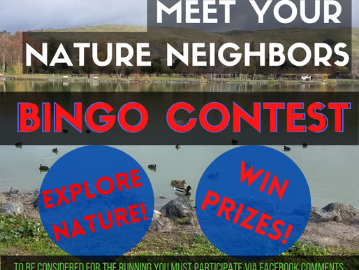 Meet Your Nature Neighbors: Bingo Contest