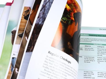Exploitez de nouvelles opportunités de croissances et stimulez les ventes grâce aux catalogues.