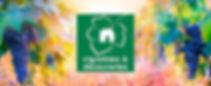 logo_vignoble_et_découverte.jpg
