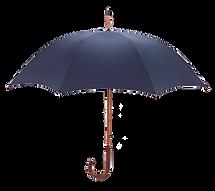 umbrella_edited.png