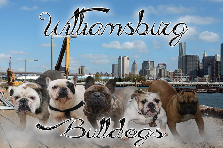 Williamsburgh1-1.jpg