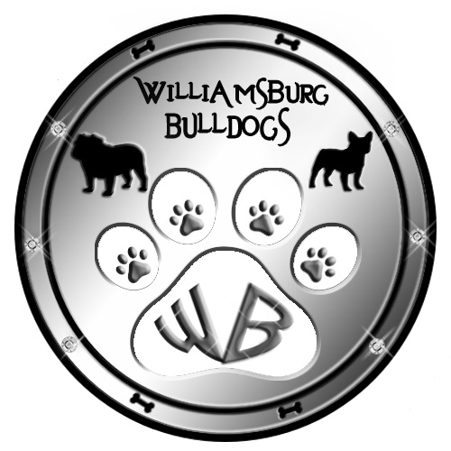 williamsburg+bulldog+logo+new.jpg