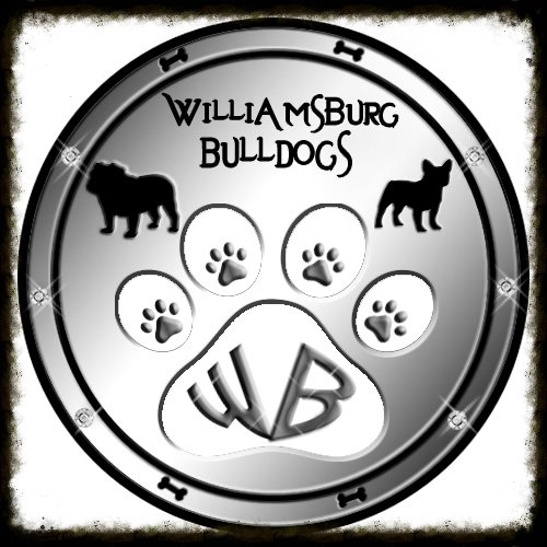 williamsburg+bulldog+logo+new.jpg 2014-3-3-23:43:1