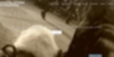 Screen Shot 2020-05-17 at 4.26.03 PM.png