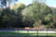 SPVPCMidlandStallenJ2019-10-29_0047.jpg