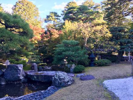 Imperial garden 2.jpeg