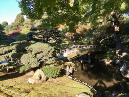 Imperial Garden 3.jpeg