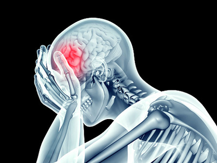 Trauma on the Brain