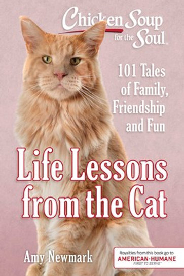 Life Lessons from the Cat
