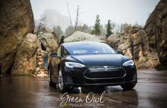 2019 Tesla Rally