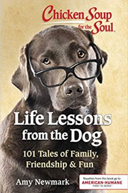 Life Lessons from the Dog