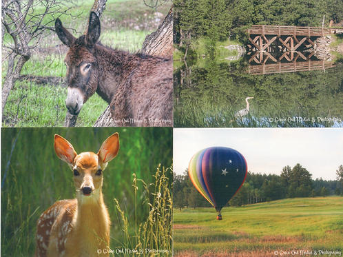 Something Special in the Black Hills notecards w/envelopes