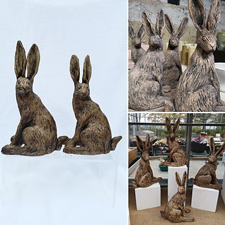 Hare collage.jpg