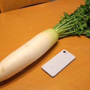 WHAT IS DAIKON RADISH?
