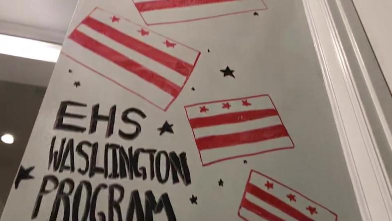 Washington Flag Wall
