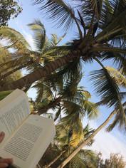 Lesen in der Hängematte
