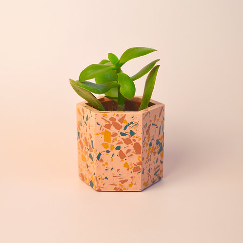 Terrazzo pink plant pot