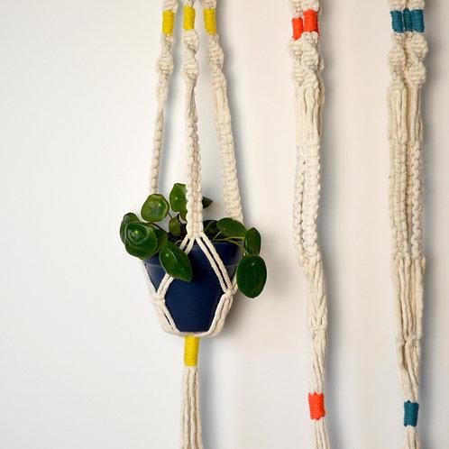 Coloured macrame plant hangers