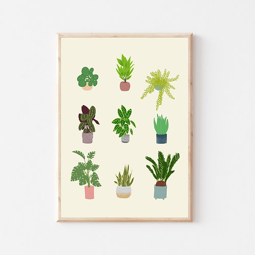 'Houseplants' A4 print