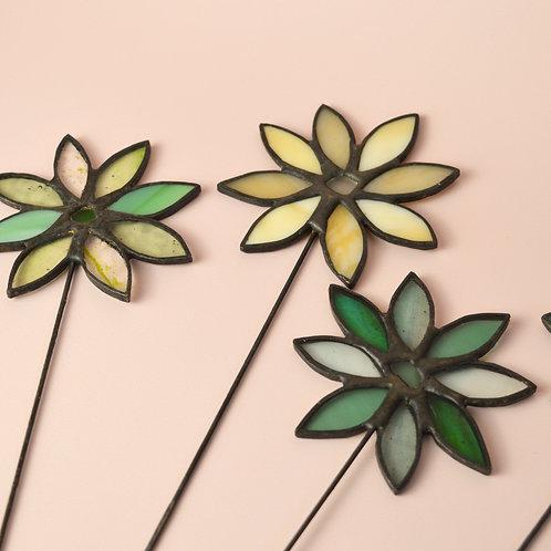 Glass daisy