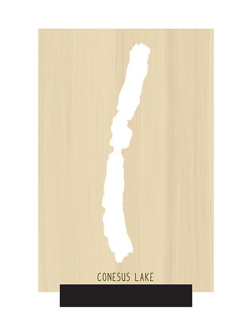 Conesus Lake Free Standing Mini Map