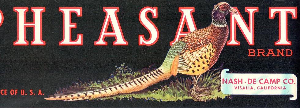 Vintage Pheasant Brand Visalia, CA Fruit Can Label